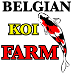 Belgian Koi Farm